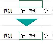 「男性」のオプションボタンが入っているセルを選択