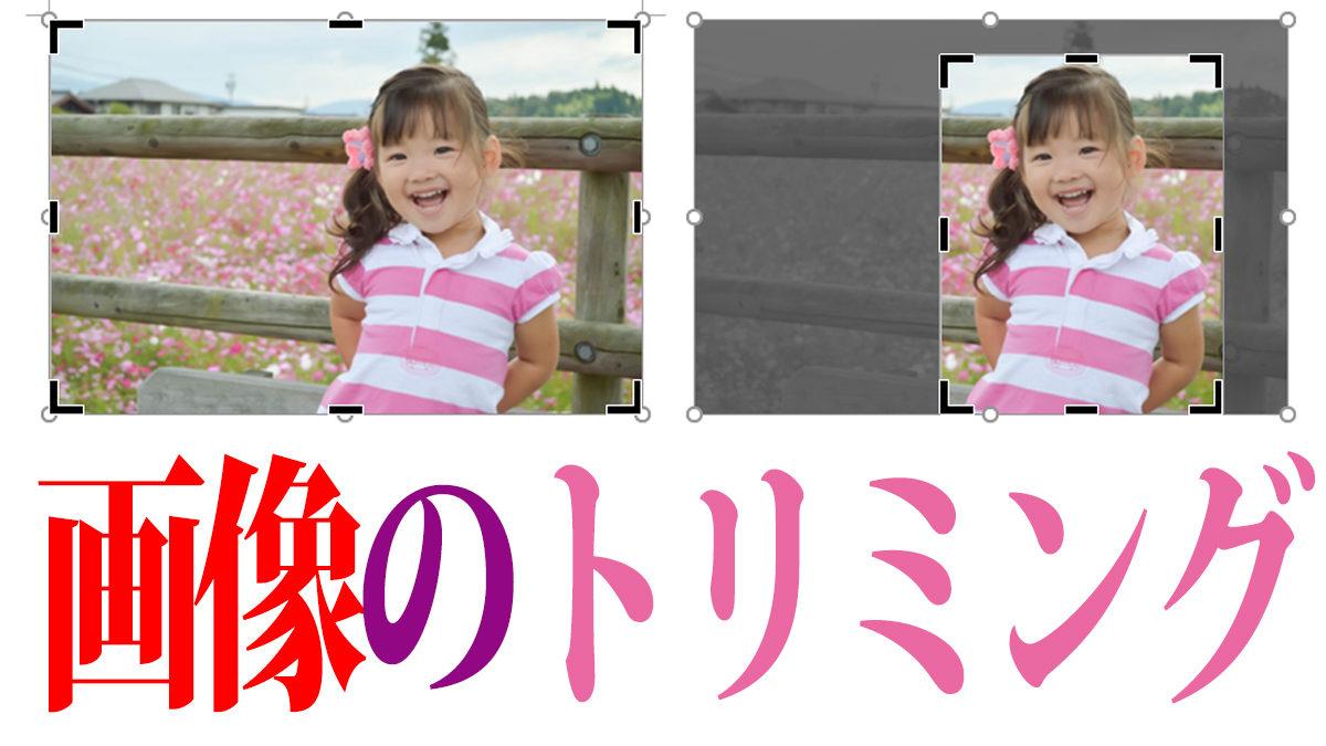 写真・画像をトリミングする基本操作