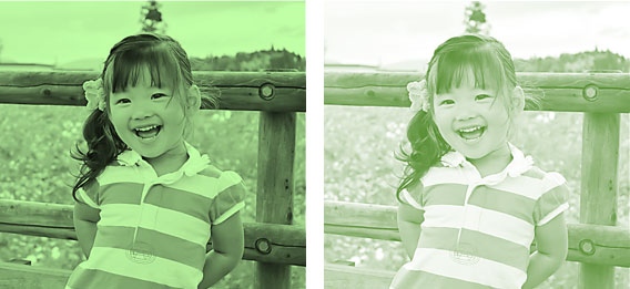 「色の変更」適用した左が濃い色、右が淡い色
